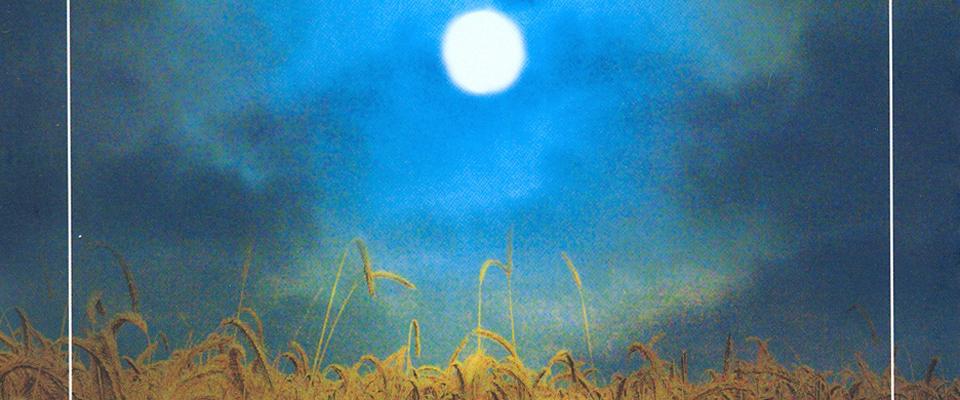 A lúa da colleita